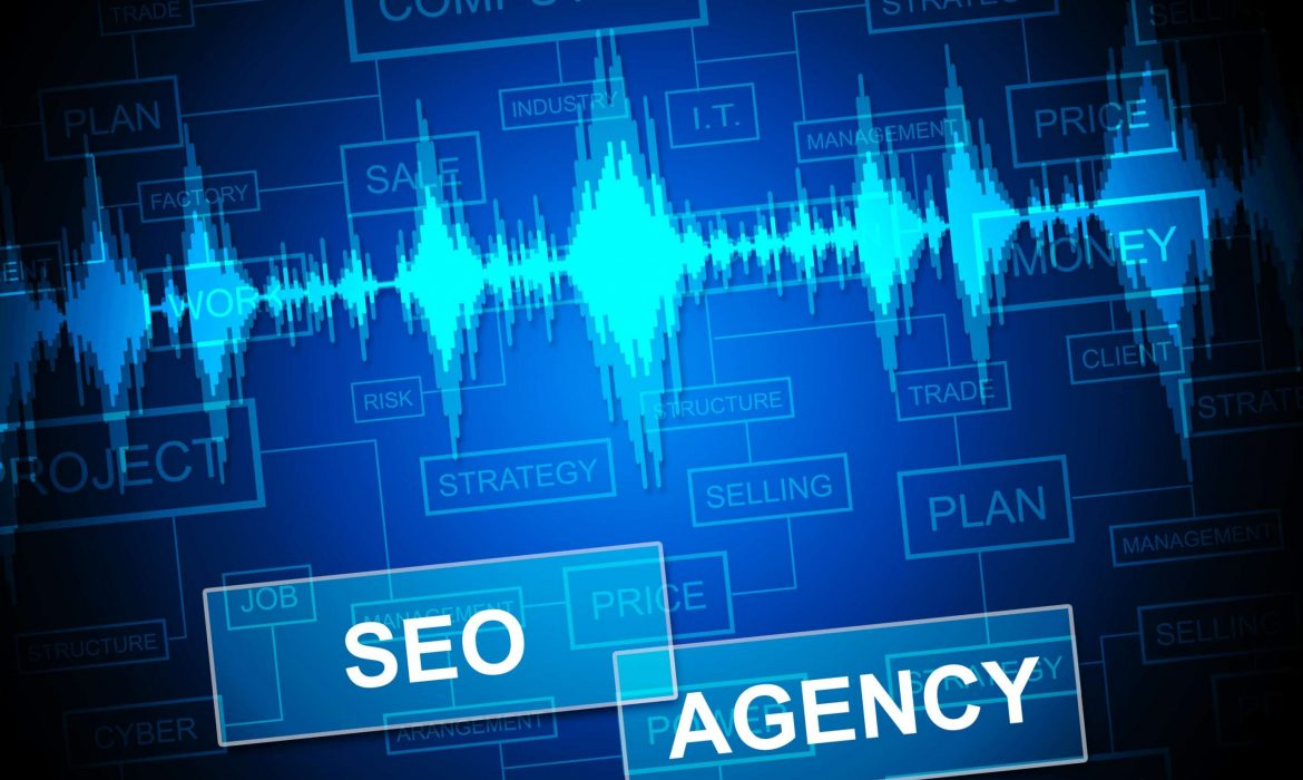 Questions To Ask an SEO Agency While Choosing One to Represent Your Business